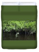 Cypress Leaves And Fluted Trunks Duvet Cover