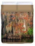 Cypress Winter Colors Duvet Cover