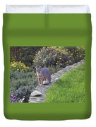 D-a0037 Gray Fox On Our Property Duvet Cover