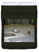 D-a0048 Mallard Ducks In Our Yard Duvet Cover