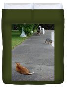 D-a0050-dc Gray Fox And Our Cat On Our Pool Deck Duvet Cover