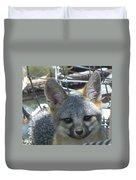 D-a0068 Gray Fox Pup Duvet Cover