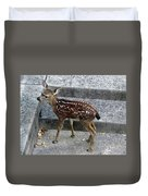 D-a0069 Mule Deer Fawn On Our Property On Sonoma Mountain Duvet Cover