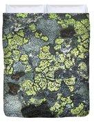 D07343-dc Lichen On Rock Duvet Cover