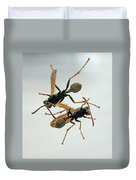 D2b6337 Wasps On Sonoma Mountain Duvet Cover
