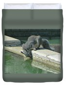 D2b6341-dc Gray Squirrel Drinking From The Pool Duvet Cover