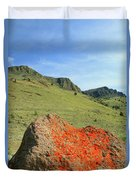Da5872 Lichen Covered Rock Below Abert Rim Duvet Cover