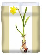 Daffodil And Bulb Duvet Cover