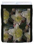 Daffodil Study Duvet Cover