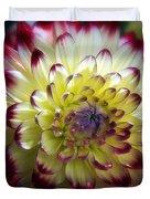 Dahlia Fine Art Photograph Duvet Cover by Gigi Ebert
