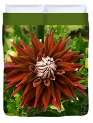 Dahlia In Bloom 18 Duvet Cover