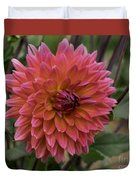 Dahlia In Bloom 19 Duvet Cover