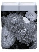 Dahlias Multi Bw Duvet Cover