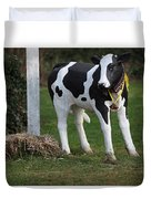 Dairy Cow Stature. Duvet Cover