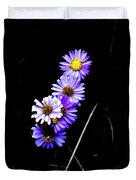 Daisies In Purple Duvet Cover by Lorraine Devon Wilke