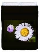 Daisy Fleabane 3 Duvet Cover