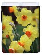 Dallas Daffodils 01 Duvet Cover