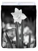 Dallas Daffodils 53 Duvet Cover
