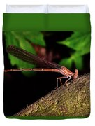 Damselfly 006 Duvet Cover