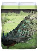 Dancing  Peacock Duvet Cover