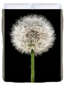 Dandelion Gone To Seed Duvet Cover