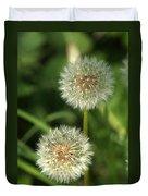 Dandelion Seed Heads Duvet Cover
