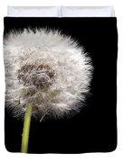 Dandelion Seedhead Duvet Cover