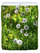 Dandelions On The Maryland Appalachian Trail Duvet Cover