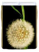 Dandelion's Seed Head. Duvet Cover