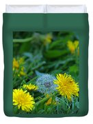 Dandelions, Young And Old Duvet Cover