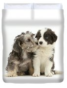 Dandy Dinmont Terrier And Border Collie Duvet Cover