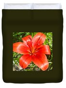 Dark Orange Red Lily II Duvet Cover