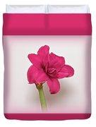 Dark Pink Amaryllis Duvet Cover