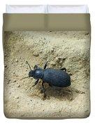Darkling Beetle In Sand Duvet Cover