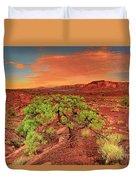 Dawn Light Capitol Reef National Park Utah  Duvet Cover
