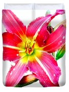 Day Lily No 2 Duvet Cover