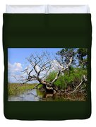Dead Cedar Tree In Waccasassa Preserve Duvet Cover