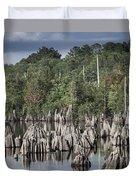 Dead Lakes Cypress Stumps Duvet Cover