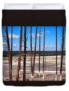 Dead Trees Standing In Hot Springs Within Yellowstone National P Duvet Cover