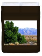 Death Valley 2 Duvet Cover