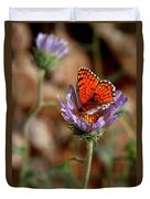 Death Valley Butterfly Duvet Cover