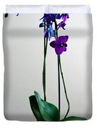Decorative Orchid Photo A6517 Duvet Cover