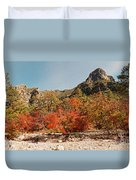 Deep In Mckittrick Canyon - Lost Maples And Ponderosa Pines Against Backdrop Of Guadalupe Mountains  Duvet Cover