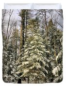 Deep In The Maine Woods Duvet Cover