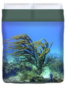 Deepwater Gorgonia Just Flowing In The Wind Duvet Cover