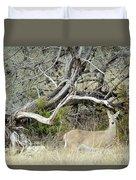Deer 009 Duvet Cover