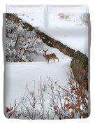 Deer At Castlewood Canyon Duvet Cover