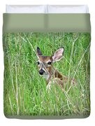Deer Bedded Down During Mid Day Duvet Cover