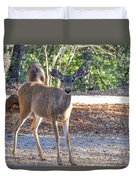 Deer Doe - 1 Duvet Cover