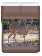 Deer Doe - 2 Duvet Cover